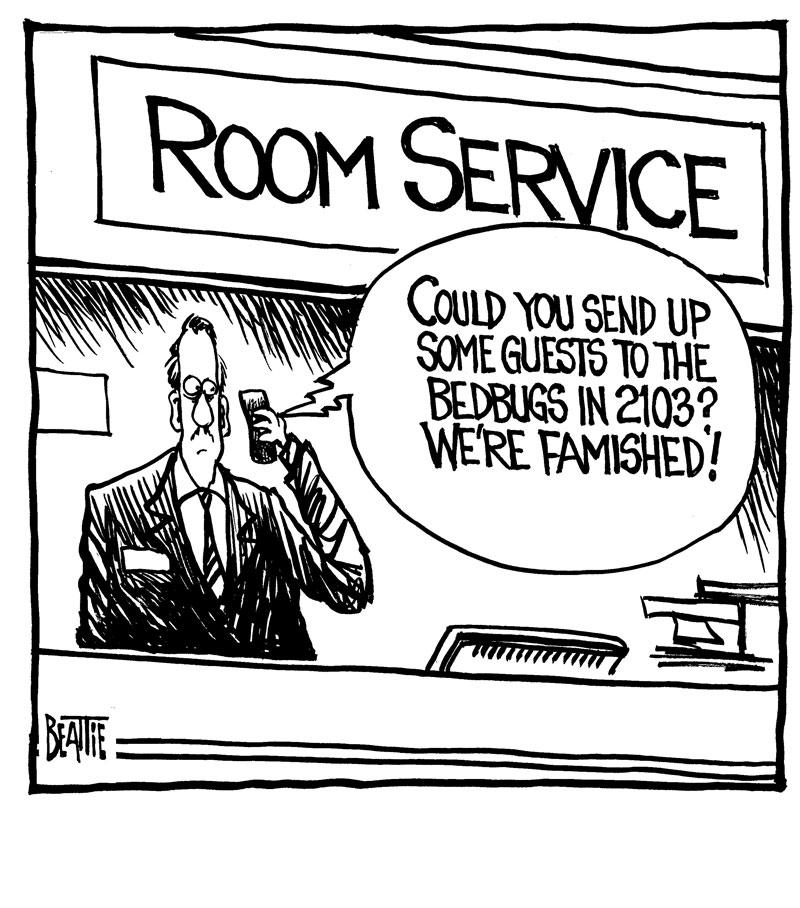 bedbug_room_service